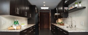 Cambria Bellingham Dark Cabinets Backsplash Ideas